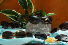 Maui sunglasses display